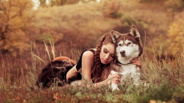 Девушка обняла собаку породы маламут