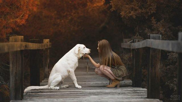 Девушка с русыми волосами с белой собакой на деревянном мосту