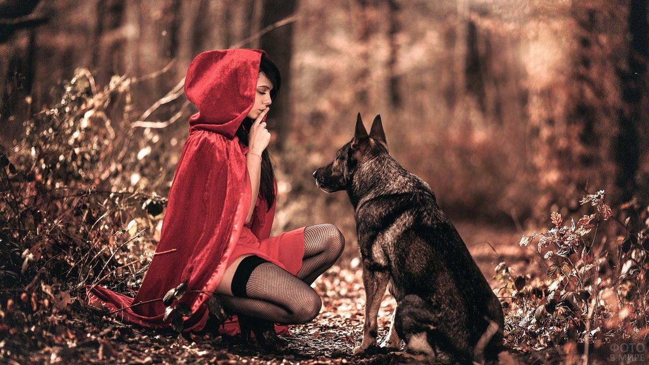 Девушка в красном плаще с собакой в лесу