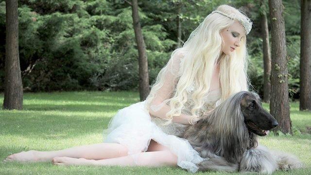 Девушка в наряде принцессы с серой пушистой собакой в зеленом лесу