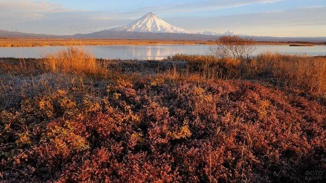 Красно-жёлтые берега реки