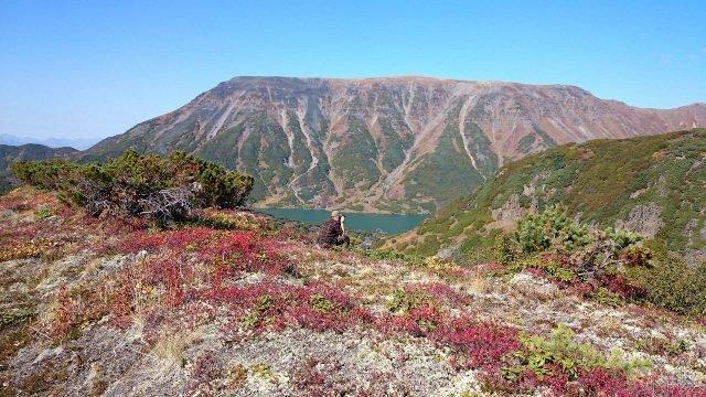 Красные цветы и фотограф снимающий горы