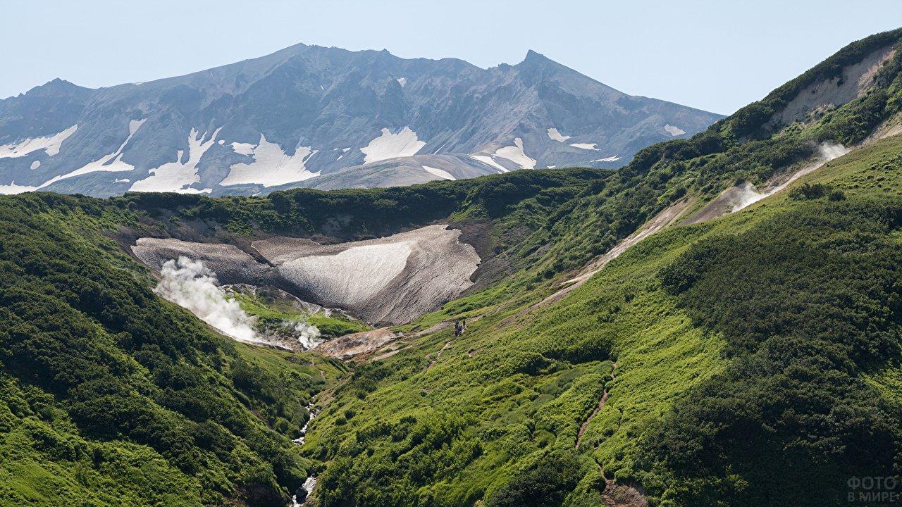 Разнообразие зелени на склонах горы