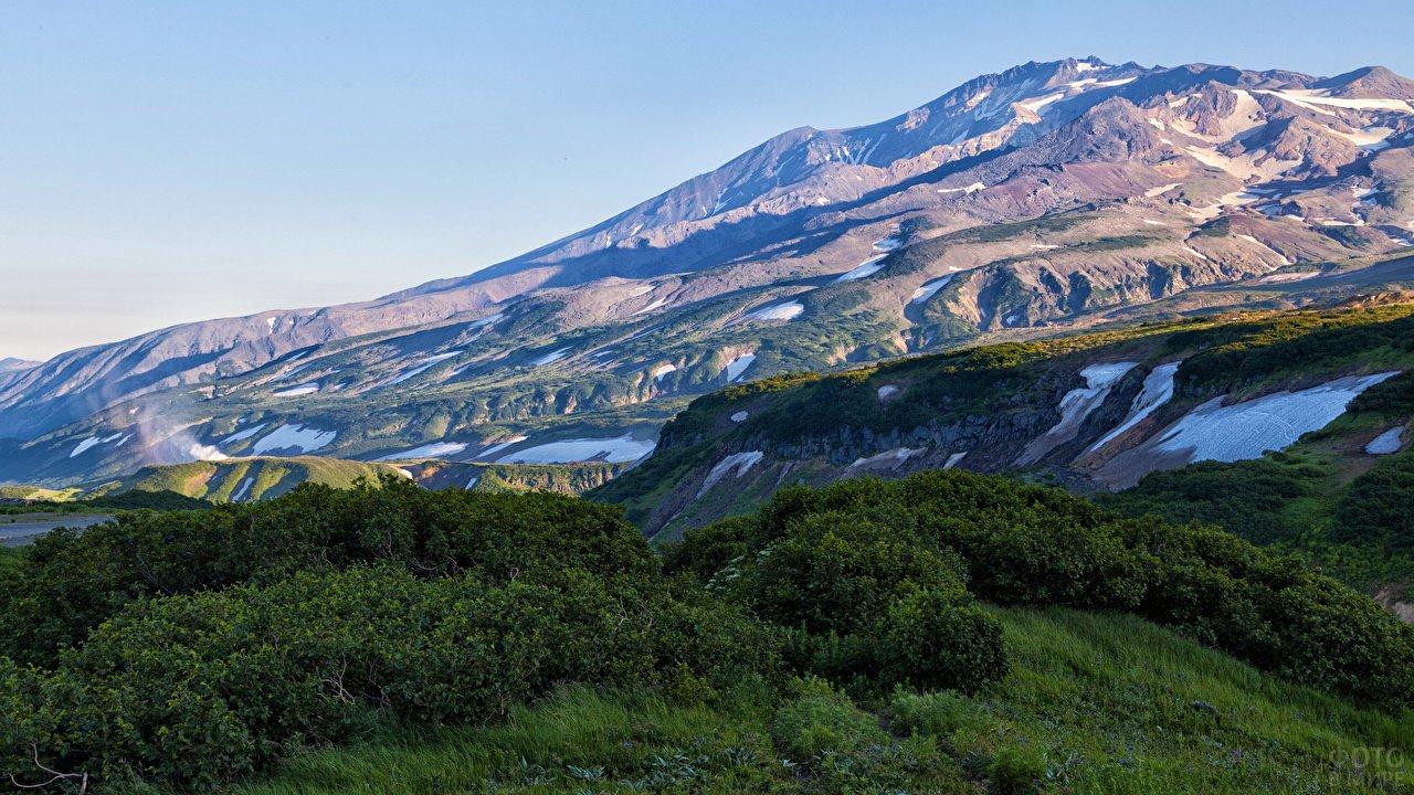 Зелёные кусты на фоне склона горы