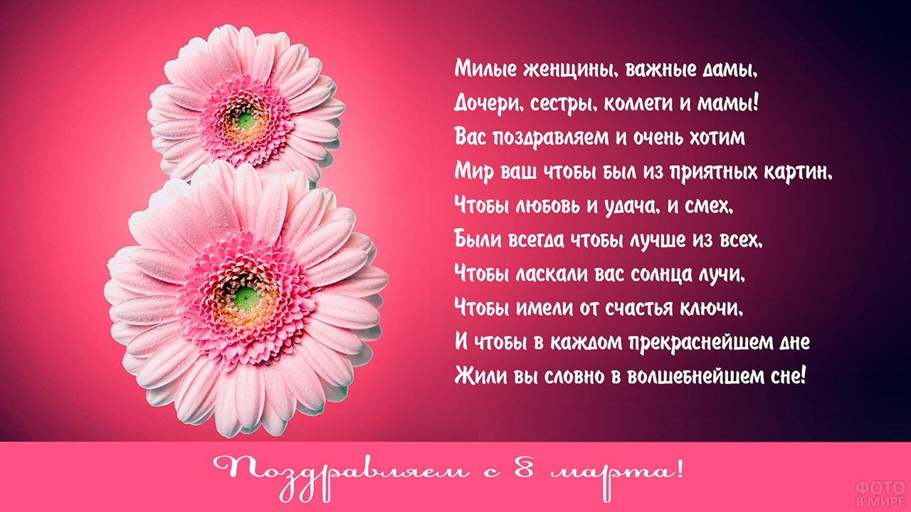 Поздравление с 8 марта на розовом фоне с восьмёркой из гербер