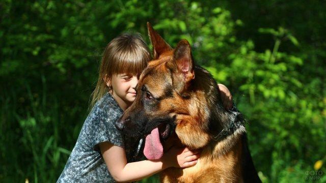 Девочка с немецкой овчаркой