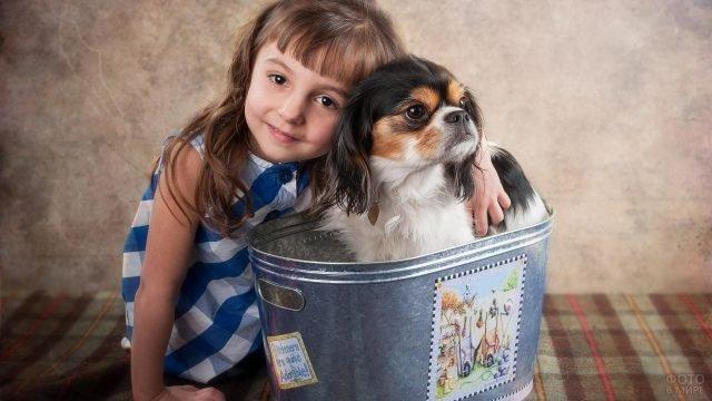 Девочка с собачкой в корзинке