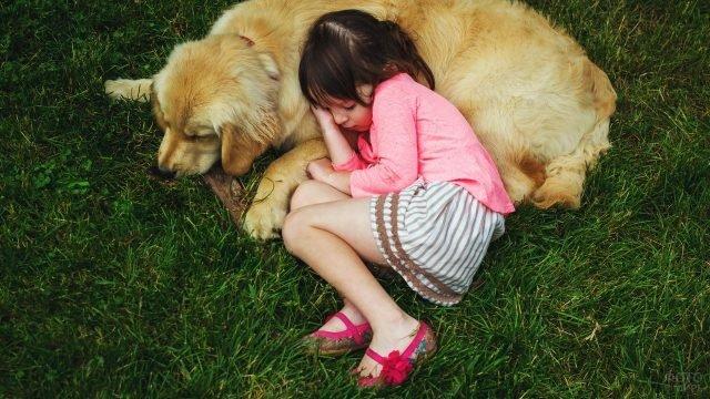 Девочка с собакой спят на зелёной траве
