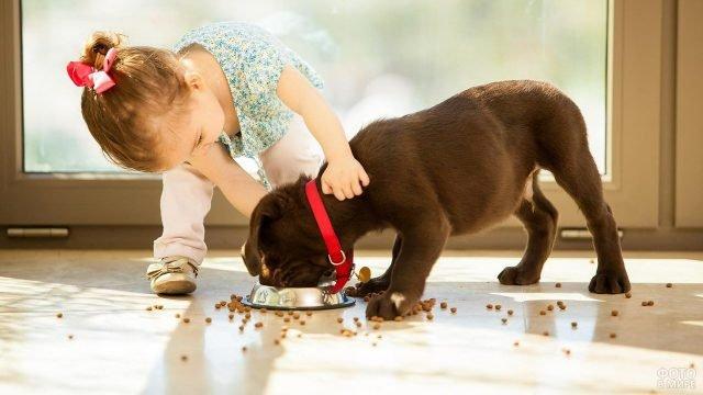 Девочка заставляет кушать собаку