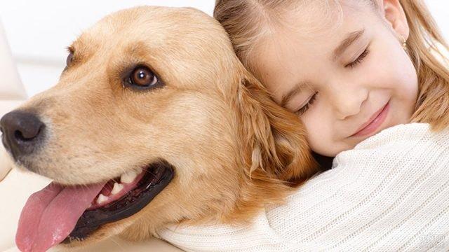 Крепкая дружба собаки с ребёнком