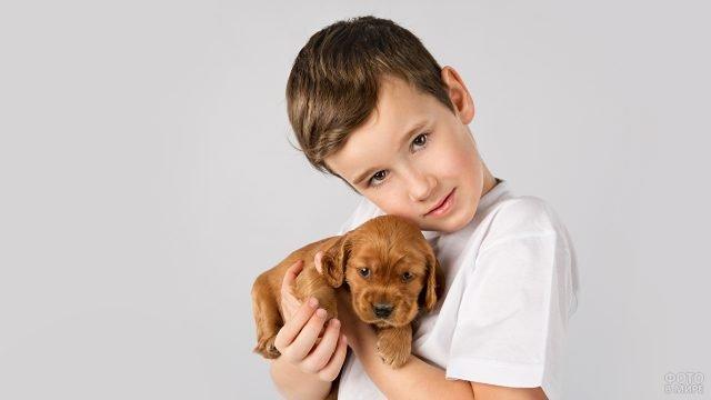 Мальчик держит на руках милого щенка
