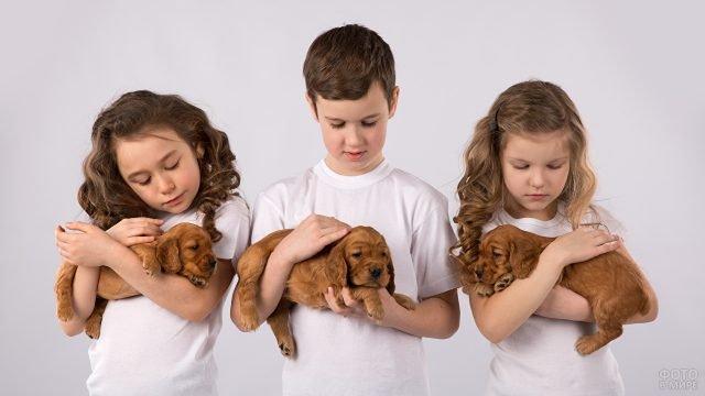 Мальчик и девочки с щенками