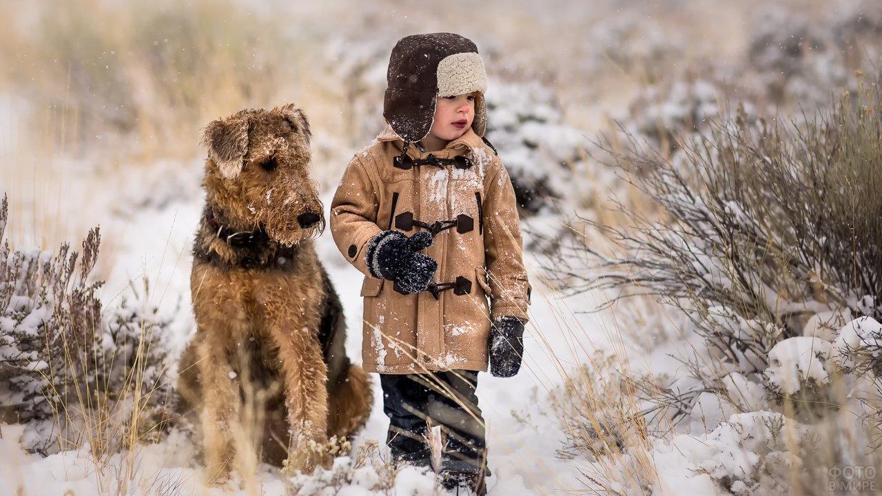 Мальчик с милой собачкой зимой