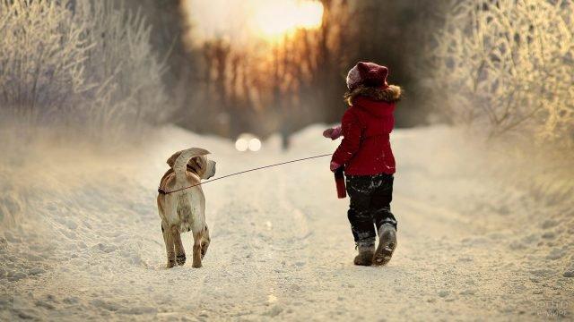 Ребёнок гуляет с собакой в зимнем лесу