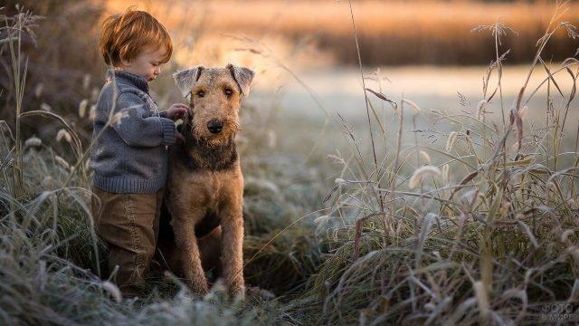 Рыжий малыш с милым псом