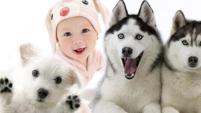 Забавный малыш с собачками