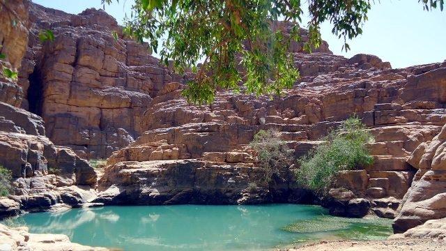 Гельта среди скал в пустыне Сахара на территории Алжира