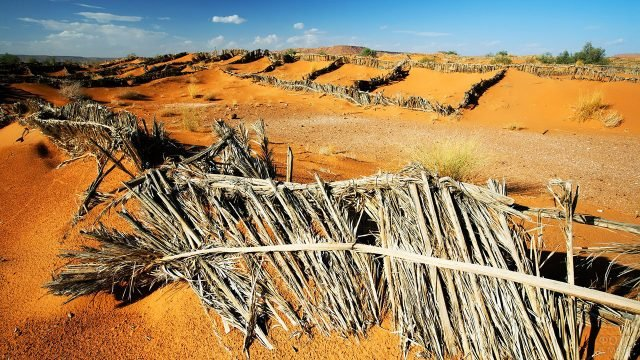 Обжитая часть пустыни Сахара в Африке