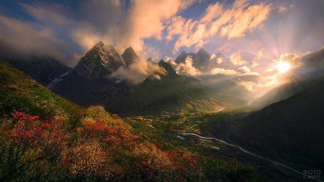 Цветущий склон холма в лучах заходящего солнца над Тибетом