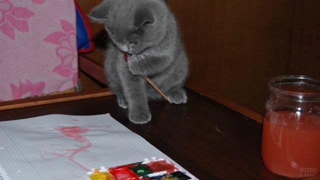 Котёнок играет с кисточкой и красками