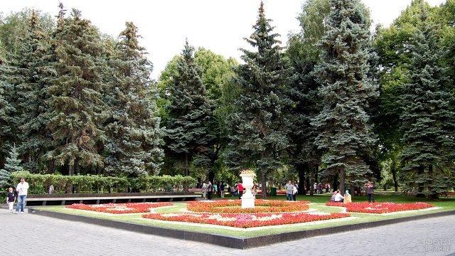 Ели Тайницкого сада на территории Кремля