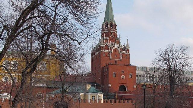 Троицкая башня Кремля среди осенних деревьев Александровского сада