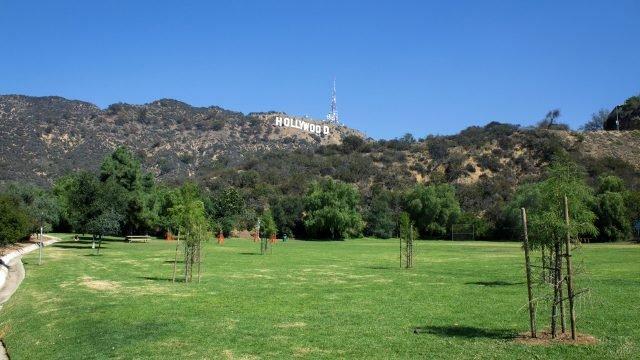Лужайка в парке у подножья Голливудского холма