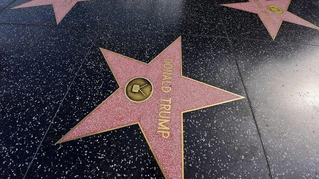 Звезда Дональда Трампа на аллее славы