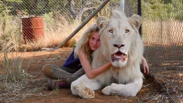 Девушка обнимает белого льва