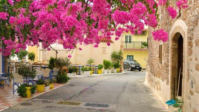 Цветущая улочка курорта Малия на острове Крит