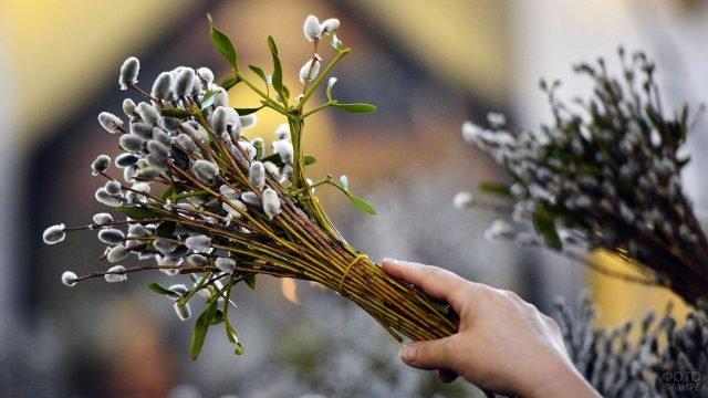 Букет вербы к православному празднику