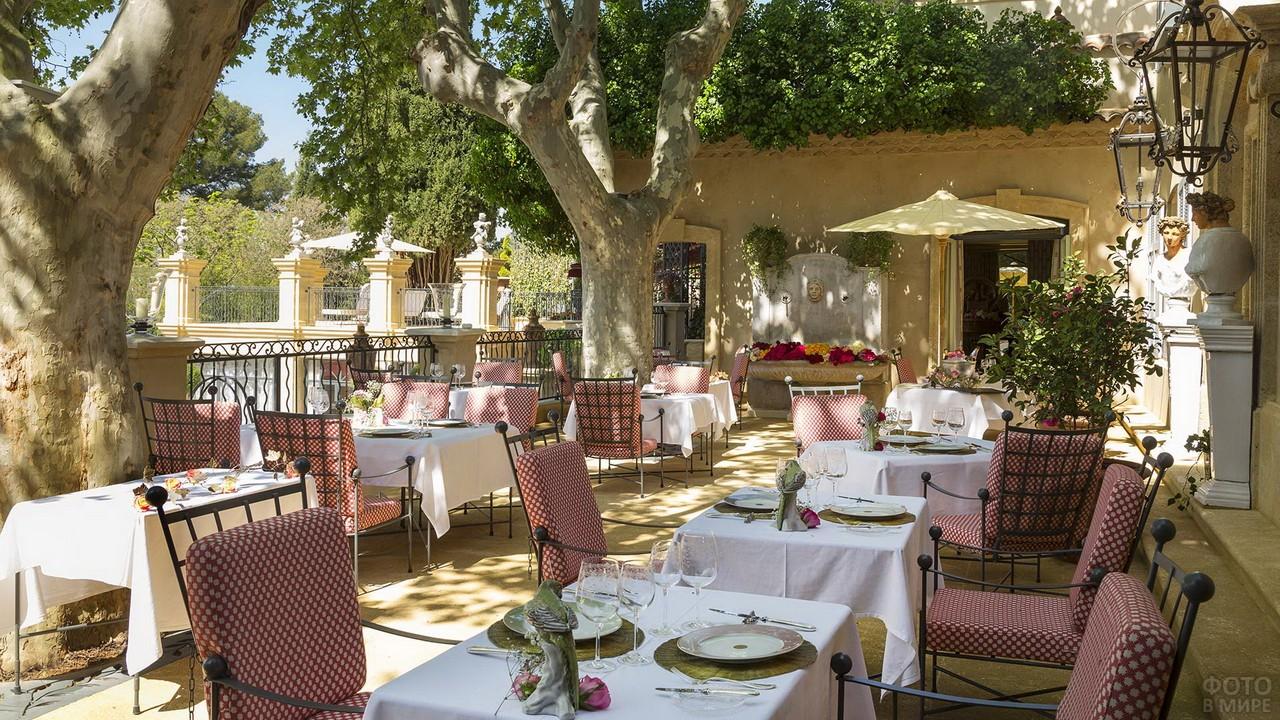 Ресторан на улице среди деревьев