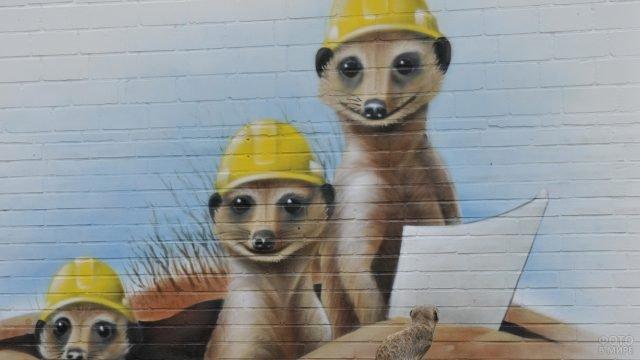 Граффити с изображением трёх сурикатов в строительных касках