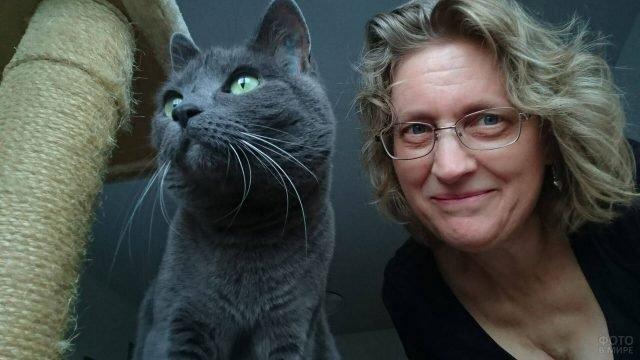 Русская голубая кошка со своей хозяйкой