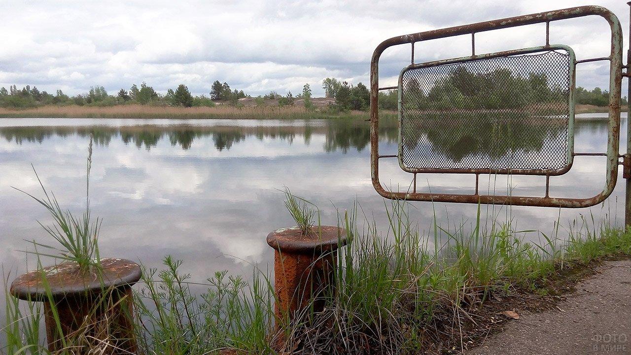 Дикая природа в некогда речном порту Припяти