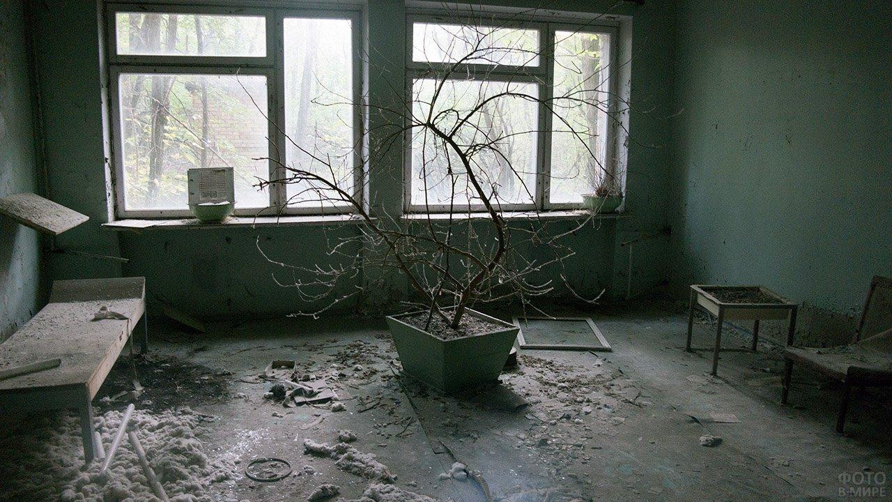 Картина запустения в фойе заброшенной поликлиники в Припяти