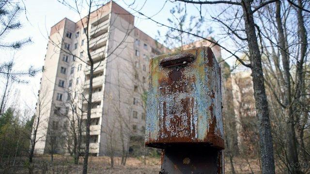 Ржавый почтовый ящик в джунглях Припяти