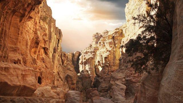 Скалы Петры в лучах солнца