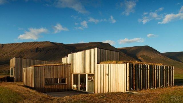 Дом в необычном стиле с травой на крыше