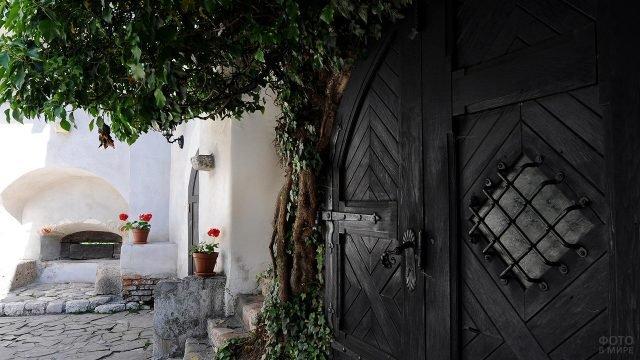 Входная дверь в дом графа Дракулы