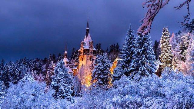Вид на замок Пелеш в вечерних огнях через заснеженные деревья
