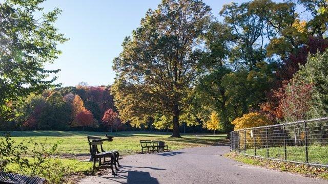 Живописная аллея в Бруклинском парке
