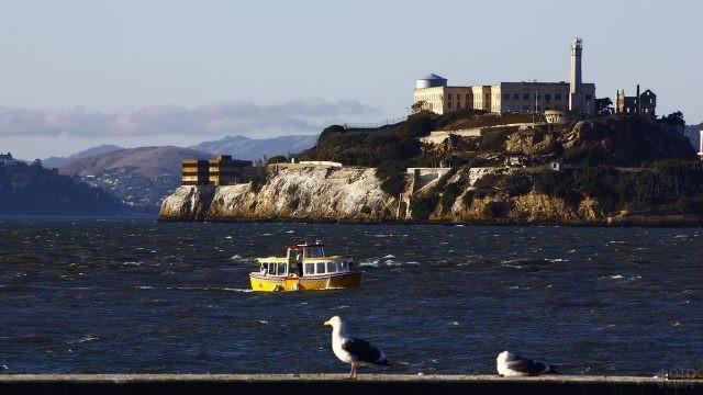 Катер проплывает мимо острова Алькатрас