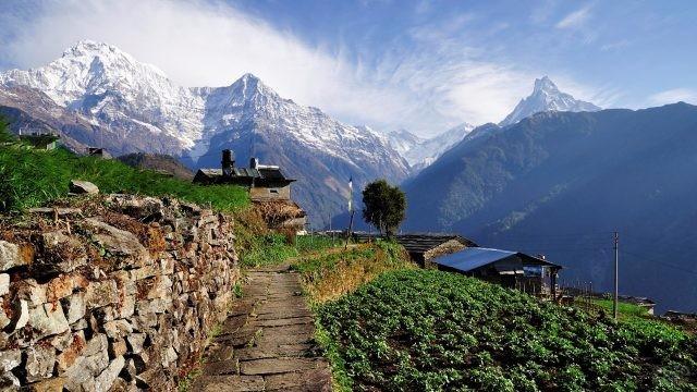 Летний пейзаж с домиками на фоне гор