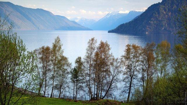 Осенние деревья на берегу Телецкого озера