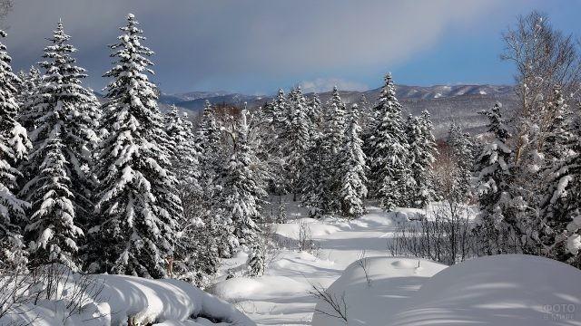 Красивая природа зимнего Сахалина