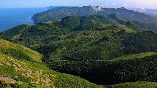 Зелённые холмы Сахалина