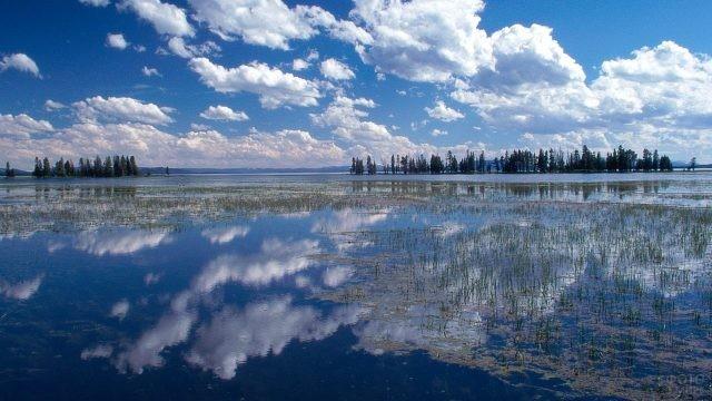 Отражение неба и облаков в озере Йеллоустоун
