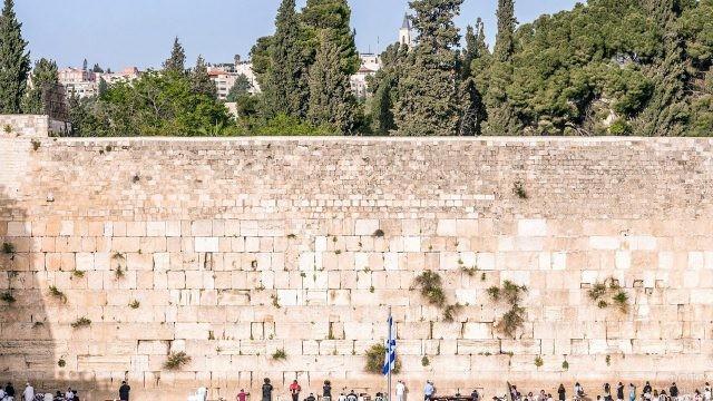 Летняя зелень над Стеной Плача в Иерусалиме