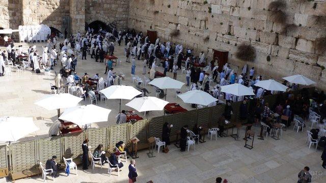 Мужская и женская части площади перед Стеной Плача